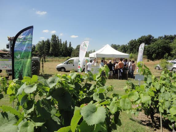 Innov'action viticulture de précision