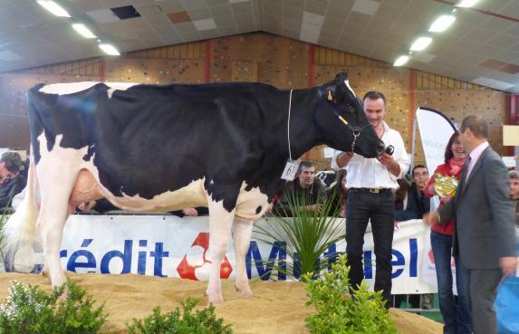 Assemblée générale de Prim' Holstein 44