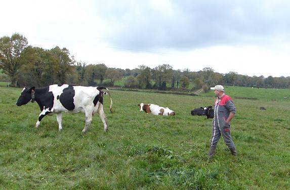 Loire-Atlantique- AG Prim'Holstein 44