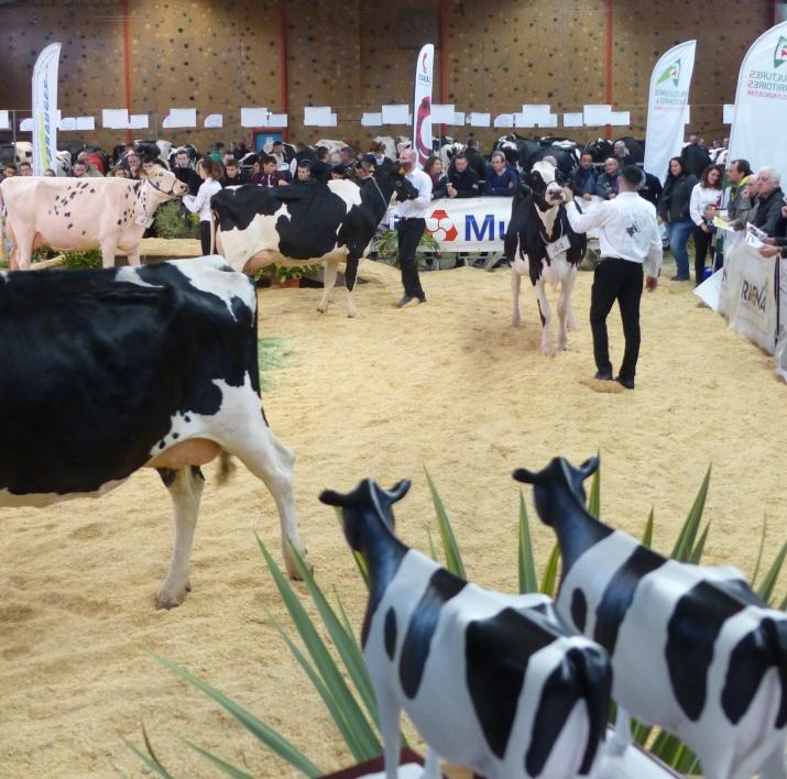 Assemblée générale Prim'Holstein 44