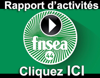 http://www.dailymotion.com/video/x2ftx44_rapport-d-activite-s-2014-fnsea-44_news